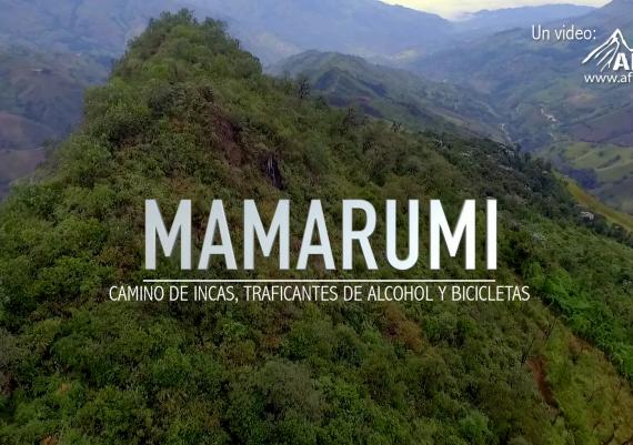 Mamarumi
